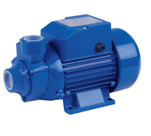 Water Pump (QB80)