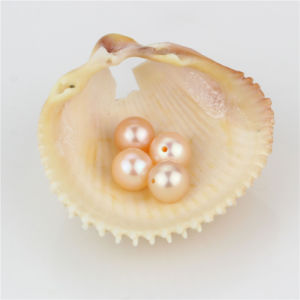 Snh Hot Sale Peach Loose Pearl Beads Wholeasle pictures & photos