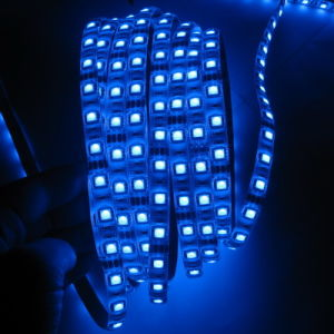 Best LED Lighting Factory in Ruian 12V/24V LED Strip Light SMD3528 5050 R/G/B/Y/W/RGB Option pictures & photos