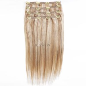 Clip in Hair Extension 100%Brazilian Human Hair pictures & photos