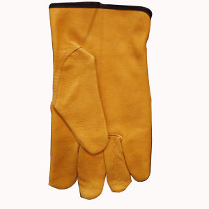 Yellow Color Leather Driver′s Gloves pictures & photos