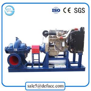 Irrigation Diesel Engine Double Suction Garden Water Pump pictures & photos