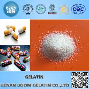 Pharmaceutial Grade Gelatin pictures & photos