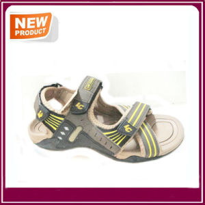 Summer Beach Sandal Shoes for Sale pictures & photos