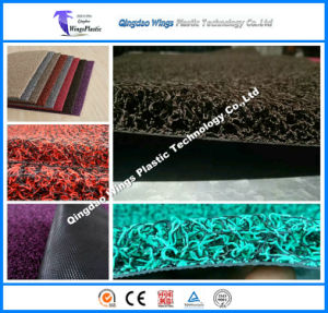 2017 Hot Sale PVC Coil Car Mat with Spike or Nail Backing pictures & photos