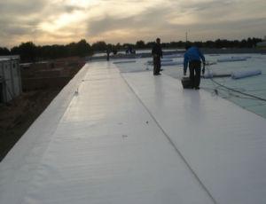 Tpo Reinforcement Waterproofing Membrane pictures & photos