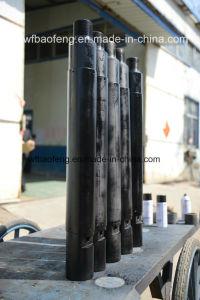 Downhole Equipment Dropout Prevent Device for Sucker Rod of Petroleum Equipment pictures & photos