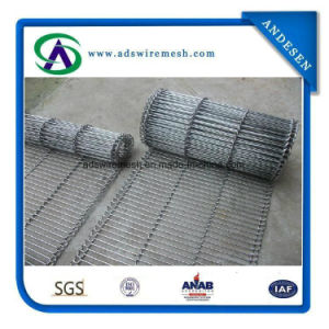 Stainless Steel 316 Flat Flex Belt Conveyor pictures & photos