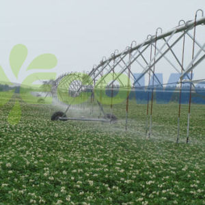 Centre Pivot Sprinklers Agriculture Irrigations pictures & photos