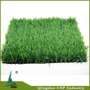 Natural Garden Carprt Grass Made of Qingdao pictures & photos