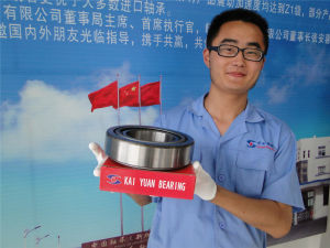 Automobile Bearing Tapered Roller Bearing 32222