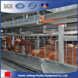 H Type Hot Galvanized Battery Egg Layer Cages pictures & photos