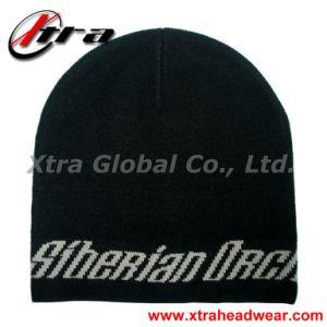 Winter Hat (XT-W009) pictures & photos