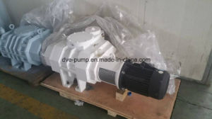 Zjp Roots Vacuum Pump with The Overload Protection pictures & photos