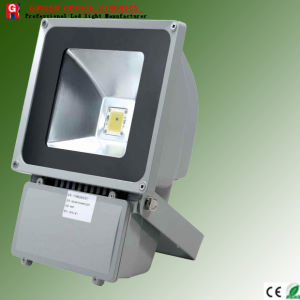 CE/RoHS Approved LED Flood Light (GR-T100WFB)