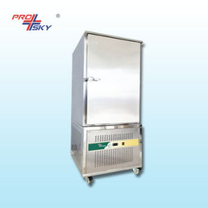 Fish Instant Blast Freezer in Thailand pictures & photos