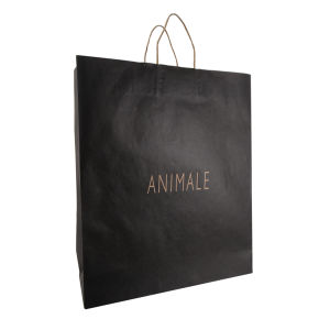 Kraft Paper Shopping Bag (FP11014) pictures & photos