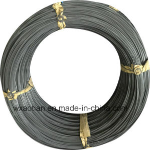 High Quality Medium Carbon Steel Wire (Swch45K) pictures & photos