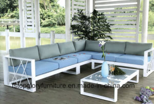 Balcony Sofa Set Vase Wicker Sofa Outdoor Furniture (TGBS-005) pictures & photos