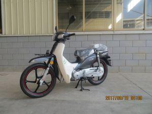 50cc/100cc Cub  C100 Moto  (SL100T-C1) pictures & photos