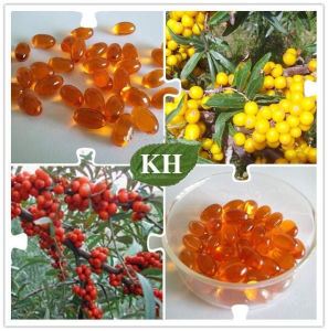 Seabuckthorn Seeds Extract &Sea Buckthorn Seed Oil pictures & photos
