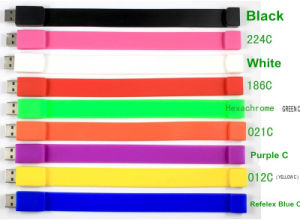 Popular 8GB Bracelet Silicone USB 2.0 USB Flash Disk pictures & photos