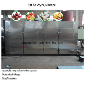 China Ss Vegetable Fruit Fish Beef Jerky Drying Dryer Machine pictures & photos