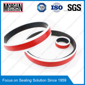 Gd1000k Tye Hydraulic Cylinder Piston Sliding Seal pictures & photos