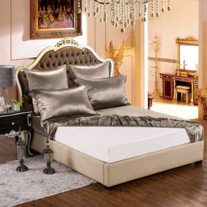 19momme 4PCS 100% Pure Silk Bedding Sets with Duvet Cover pictures & photos