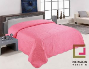 100%Polyeste Ultrasonic Quilt (BEDDING SET) pictures & photos