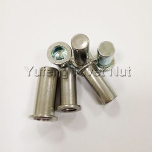 Flat Head Round Body Rivet Nut with Closed End pictures & photos