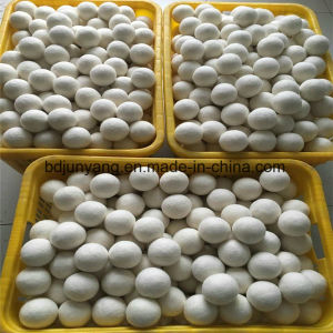 Eco-Friendly Felt Dryer Balls/Laundry Dryer Ball pictures & photos