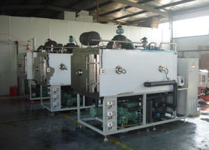 Top Quality Fruits Chips Freeze Drying Plant pictures & photos