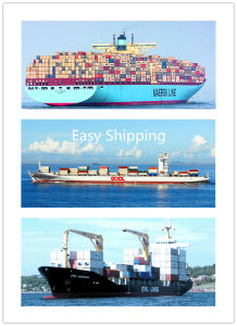 Consolidate Shipping Service From China to St John Usvi pictures & photos