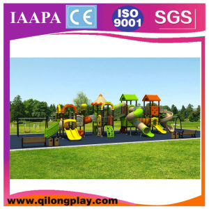 Different Kinds Theme Playground Outdoor (QL--058) pictures & photos