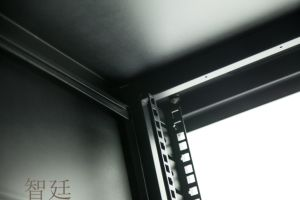 Factory Direct Sale Zt Ds Series Server Rack Cabinet pictures & photos