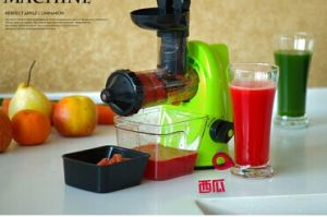 Manual Slow Masticating Single Auger Juicer for Fruit and Vegetable pictures & photos