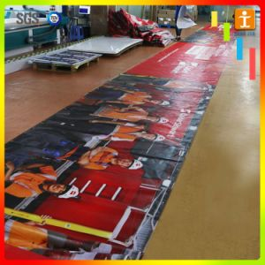 Wholesale PVC Banner, Vinyl Banner, Advertising Flex PVC Banner (TJ-003) pictures & photos