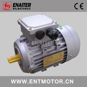 Ms Electric Three Phase AC Motor