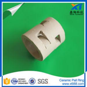Anti-Acid, High Temperature Endurance Ceramic Pall Ring pictures & photos