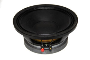 Hot Sale in 2017 10inch 350W RMS PA Speaker pictures & photos