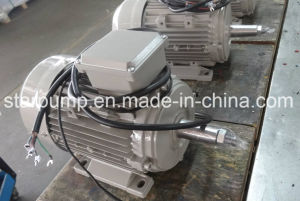 Loom Motor - Three Phase Loom Motor pictures & photos