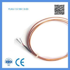 Feilong K Type Needle Shape Thermocouple for Hot Runner Nozzles pictures & photos