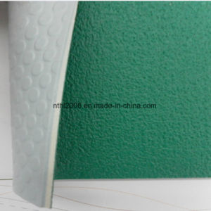 pvc sponge sheet for sports mats(HL42-05) pictures & photos