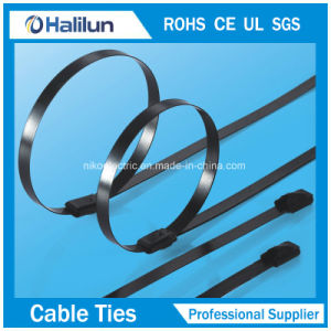 304 Fashion Style Ss Polyester Self-Locking Cable Tie for Easy Application pictures & photos