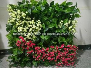 Artificial Grass Plants Green Vertical Garden Wall Decoration pictures & photos