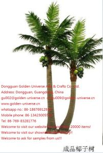 Artificial Plants and Flowers of Coco Palm Gu5435003362361344709nb980 pictures & photos