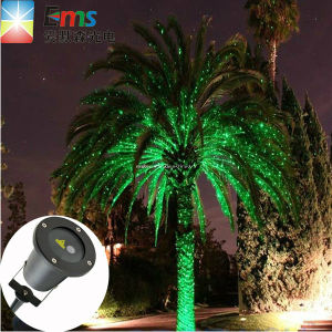 Waterproof Elf Christmas Lights Red and Green Dynamic Twinkling Star Light Projector Garden Laser Light pictures & photos