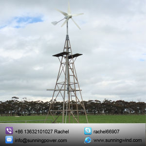 Hybrid Solar Wind Power (MAX 1000W) pictures & photos
