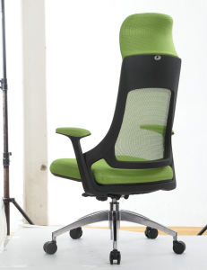 The Lime Green Armchair pictures & photos